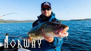 Рыбалка в Норвегии (ч.1) | Долгая дорога | Морская рыбалка | Жареная треска на воке.