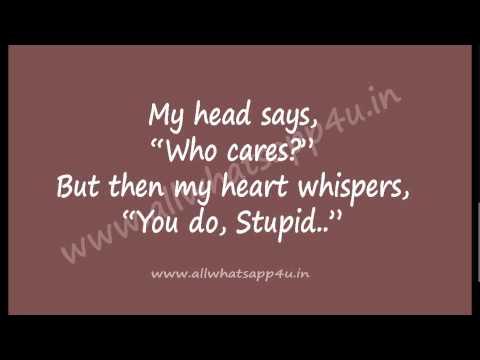 whatsapp friends status - 34 | whatsapp funny videos & whatsapp status