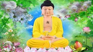 Tụng Kinh Phật hay nhất nghe mỗi đêm may mắn an lạc cả đời rất linh nghiệm ✅ 🙏