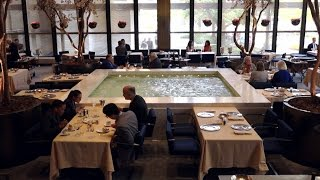 NYC's Power Lunch Spot at Four Seasons in Jeopardy