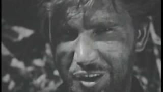 Yellowneck 1955