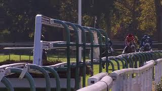 Vidéo de la course PMU PRIX ADRIEN BESNOUIN