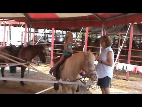 2016 Aug 19 Illinois State Fair 2nd Session Class 000 (Emma) Spfld, IL