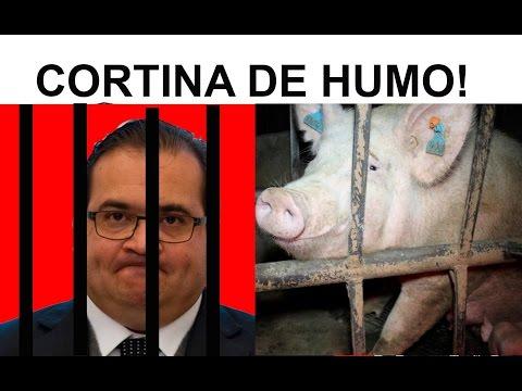 Mentiras sobre la Detención de Duarte y Lady Hotel // EL NOPAL TIMES #236