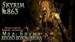 Skyrim s 863 Бардетское задание