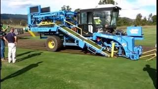 Australian Lawn Concepts Harvesting