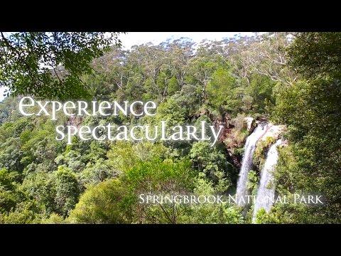 Springbrook National Park, Gold Coast, Queensland