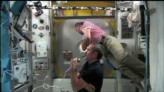 ISS Expedition 35 Ammonia Leak Spacewalk