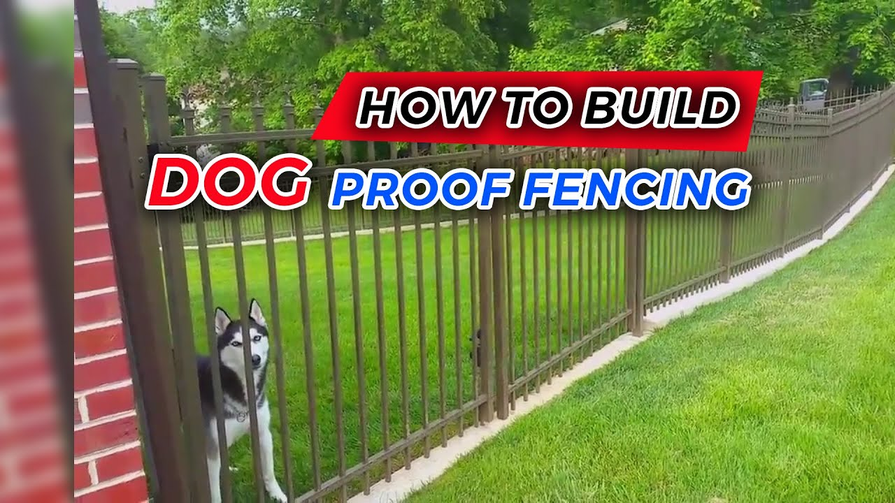 How to Build Dog Proof Fencing - YouTube