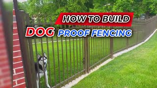 """dog Proof"" Fencing"