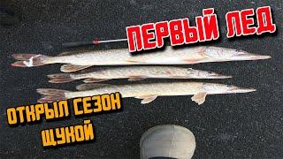 зимняя рыбалка щука на жерлицы первый лед