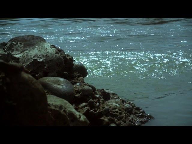 Instrumental Entry | Surya Ganjoo | Pune, India