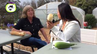 SLO TV: The Luffa Farm