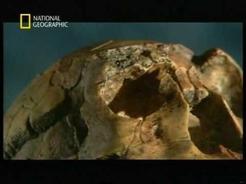 El origen del hombre - National Geographic - Español parte