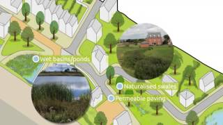 Ever wondered where the rain goes? Sustainable drainage animation thumbnail