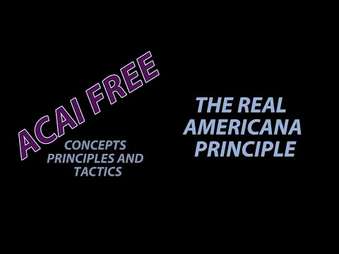 The Real Americana Principle - Malachy Friedman