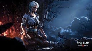 #3 ● Ведьмака 3: Дикая Охота ●  По следам Цири, Чародейка Кейра Мец