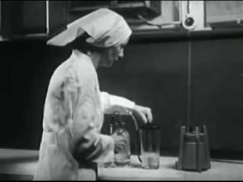 Smallpox Vaccine 1955