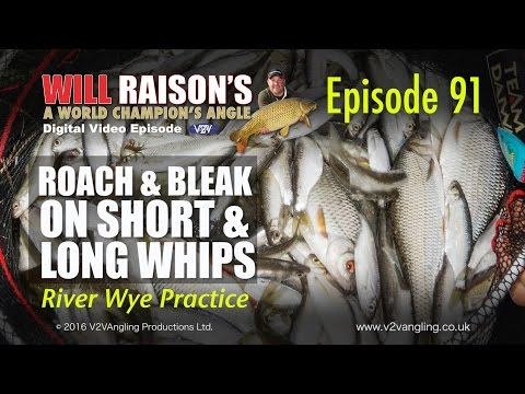 Whip fishing on the River Wye with Will Raison - teaser