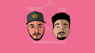 TREI SPE ft. NELI - N-am Incredere in Oameni (Official Audio)