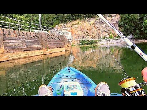 What's In This MINI Lake - Ocoee Lake #2