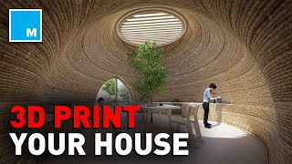 These Homes Are 3D-PRINTED   [FUTURE BLINK]