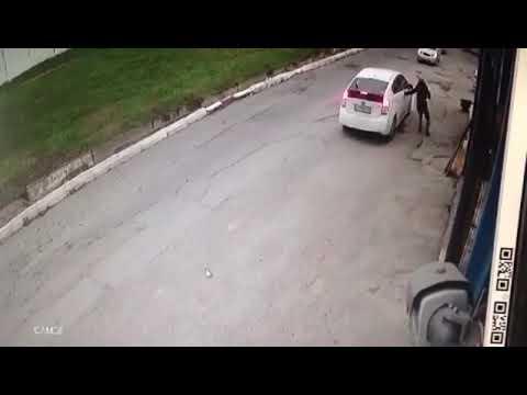 mujer atropella a perrito tras discusion con el dueno
