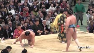 2017大相撲大阪春場所での玉鷲 vs 琴奨菊取組。