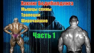 Как накачать мышцы спины. Лучшие упражнения. Техника. Часть 1. Хакинг Бодибилдинга