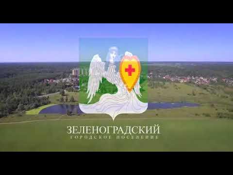 П.Зеленоградский Пушкинский район Московская область.