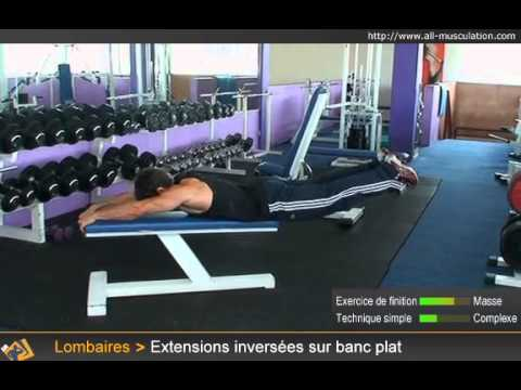 Exercice Des Extensions Lombaires Inverse Banc Plat Youtube