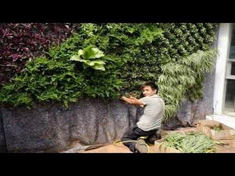 Como dise ar un jardin grande youtube - Como disenar un jardin grande ...