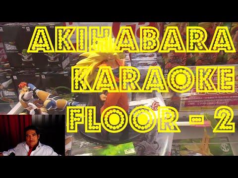 Akihabara Adores Karaoke - Floor 2 (UFO Catchers)