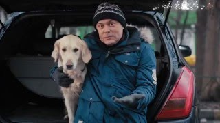 Как подружить собаку с машиной(, 2016-02-19T13:42:07.000Z)