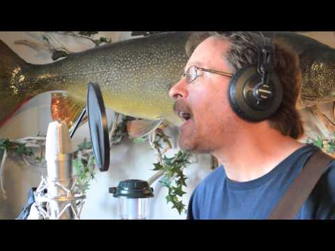 Bob Dylan, You Ain't Going Nowhere - covered by Mark Barnes
