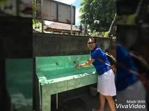 Rotary Club of Bali Taman school Sanitation and toilet project
