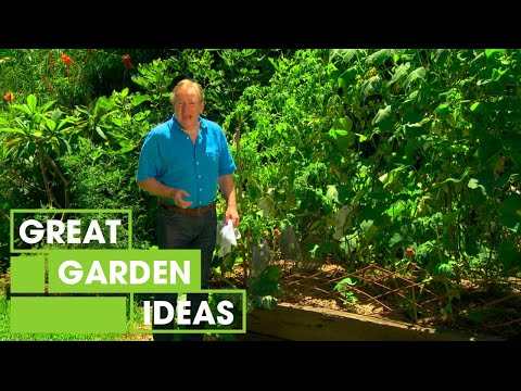 Tips To Get Your Garden Ready For Autumn | Gardening | Great Home Ideas