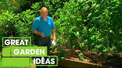 Tips To Get Your Garden Ready For Autumn   Gardening   Great Home Ideas