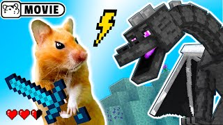 Hamster survival in Minecraft Ep.2 😱 Hamster vs Ender Dragon 😱 Come and Enjoy - Homura Ham