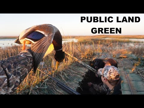 First Public Land Kansas Green Head out of the Ol' Duck Boat!!