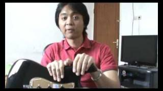 Fender American Deluxe Stratocaster guitar review (Bahasa Indonesia)