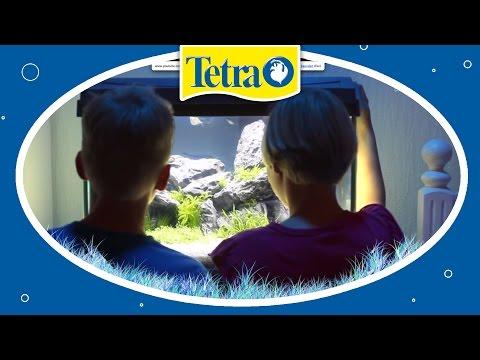 Perfekte Beleuchtung Fürs Aquarium: TETRA AquaArt