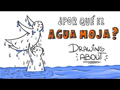 Download Youtube: ¿POR QUÉ EL AGUA MOJA?   Drawing About