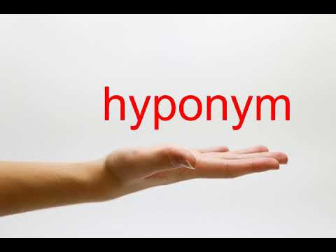 How to Pronounce hyponym - American English
