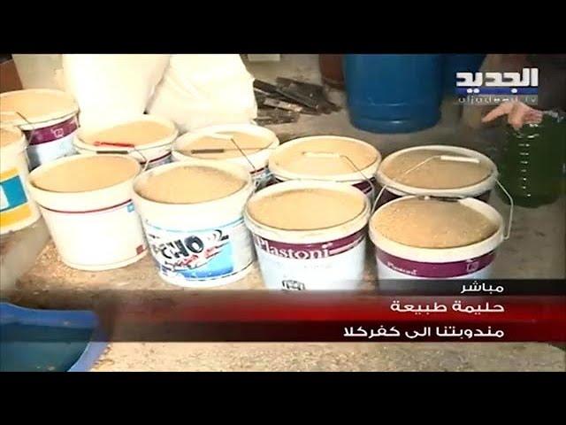 מבצע מגן צפוני בעיניים לבנוניות