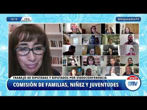 VIDEOCONFERENCIA EN VIVO: H. Cámara de Diputados de la Nación - 26 de mayo de 2021