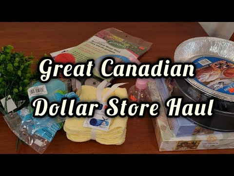 Great Canadian Dollar Store Haul / VEDA Day 29