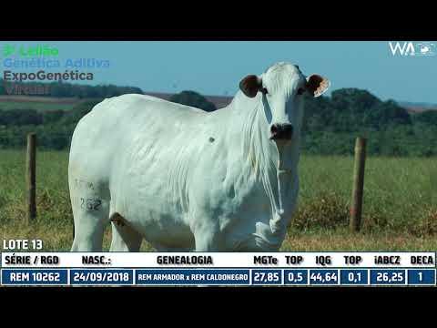 LOTE 13 - REM 10262 - 3º Leilão Genética Aditiva Expogenética 2020
