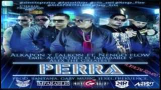 Download Perra Remix - Alkapon y Falkon Ft Ñengo Flow El Autentiko El Imparable Y Alex The Greatest MP3 song and Music Video