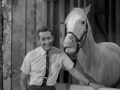 Mr Ed The Talking Horse The Empty Feed Bag Blues